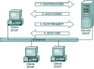 Proceso DHCP